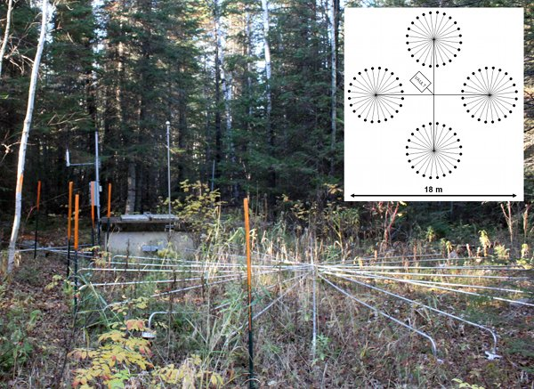 Infrasound installation in the woods with an inlay blueprint showing four rays attached to the central vault.  Overall 15 meters wide.